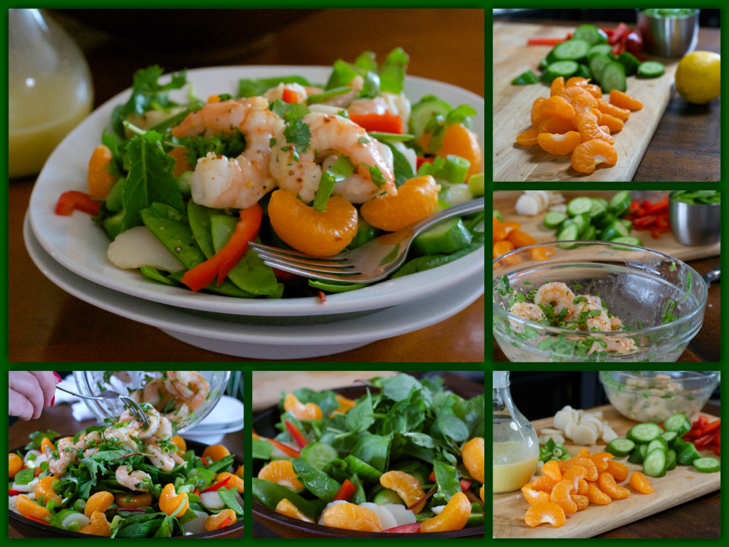 Oriental Shrimp Salad Collage