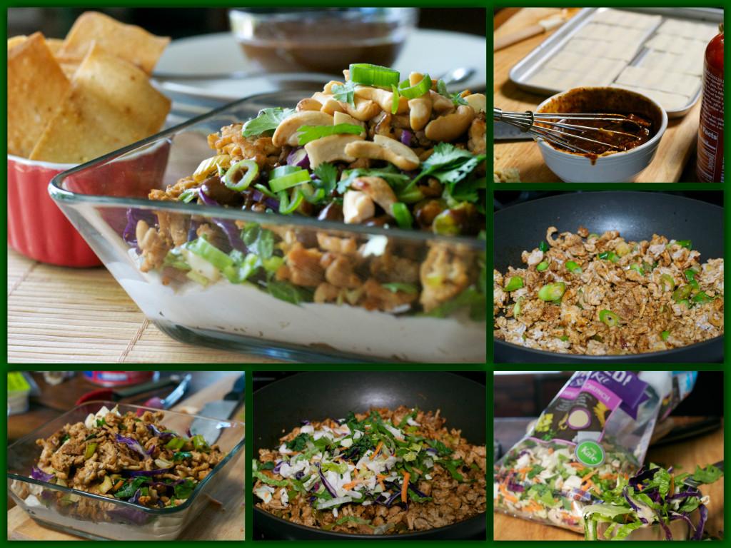 Layered Oriental Chicken Dip with Wonton Chips Collage